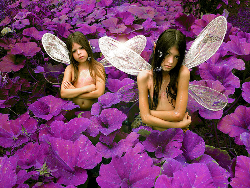 fairies photo