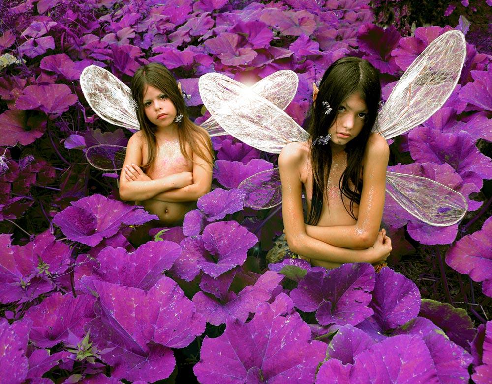 fairies photography