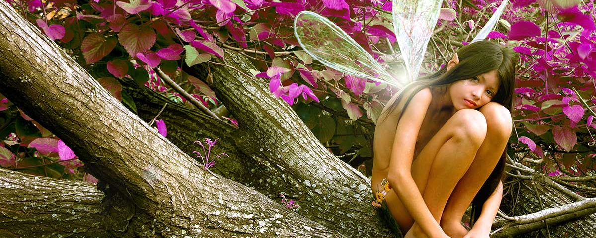 photography fairies